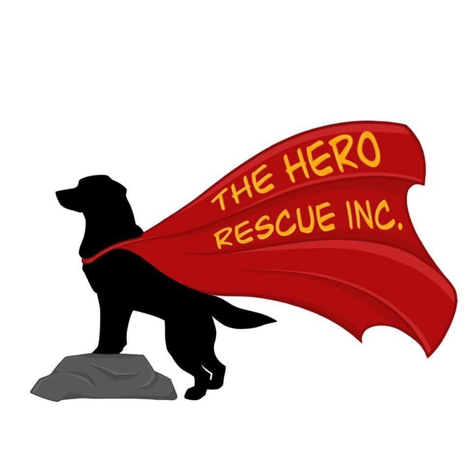 The Hero Rescue, Incorporated