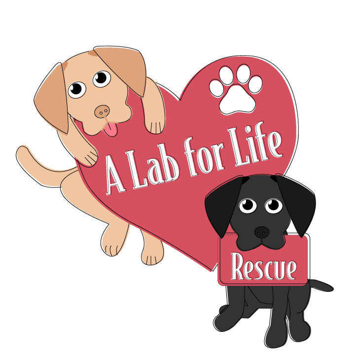A Lab for Life