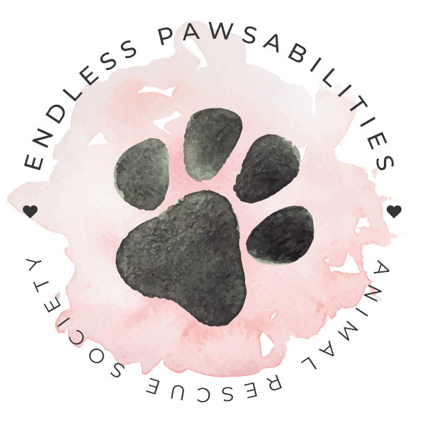 Endless Pawsabilities Rescue Society