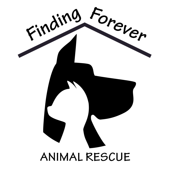 Finding Forever Animal Rescue