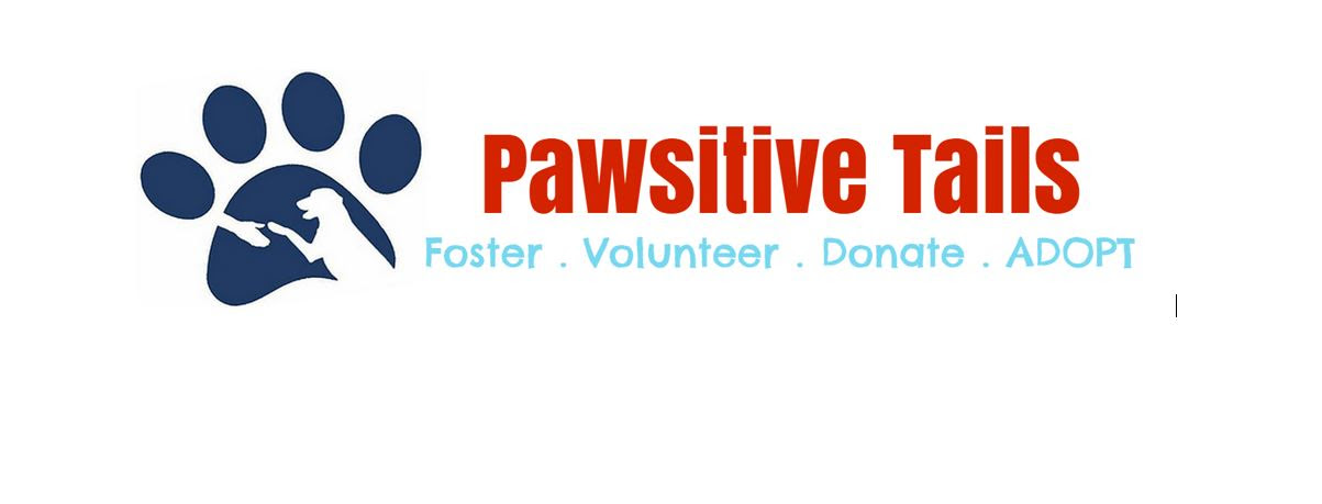 Pawsitive Tails Dog Rescue