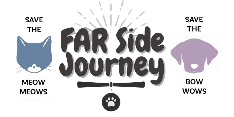 FAR Side Journey Inc