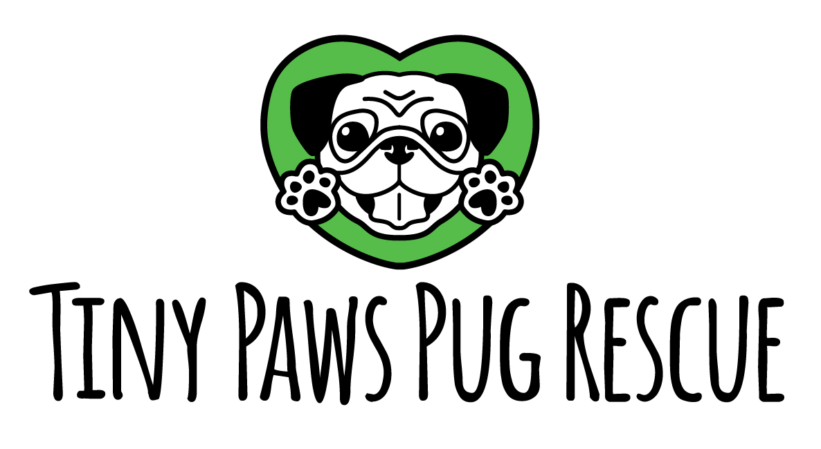 Tiny Paws Pug Rescue