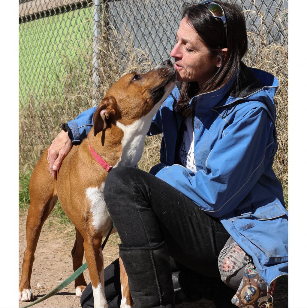 https://www.shelterluv.com/sites/default/files/animal_pics/464/2018/05/24/22/20180524223300.png