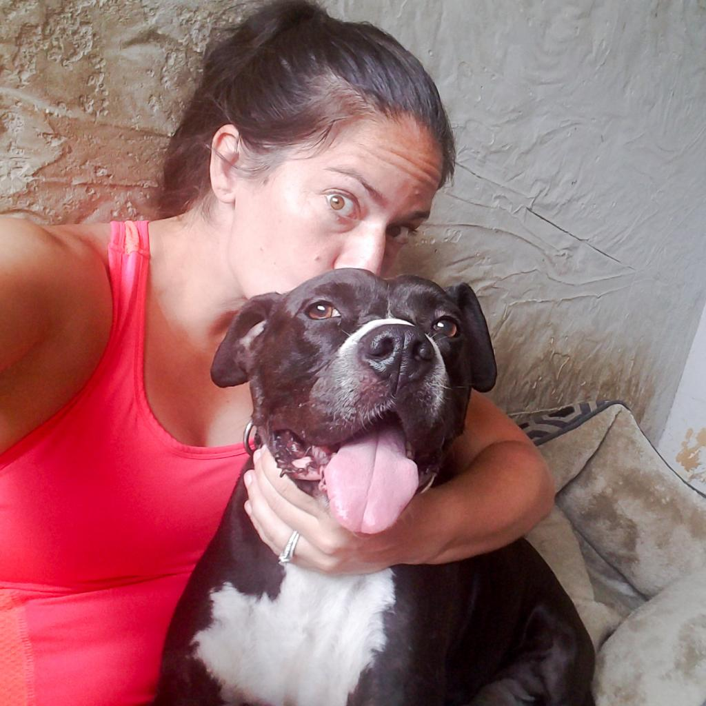 https://www.shelterluv.com/sites/default/files/animal_pics/464/2019/01/26/15/20190126150355.png