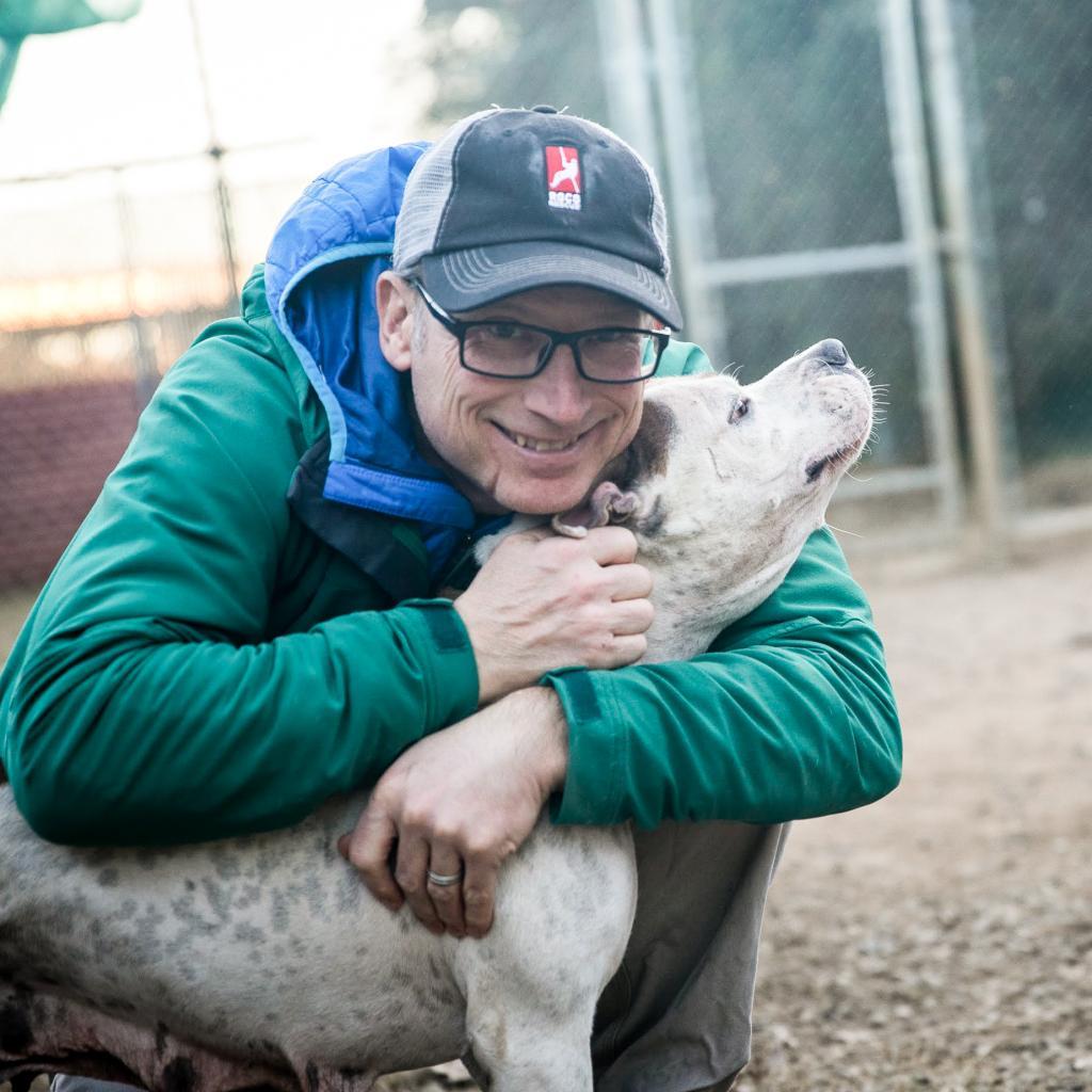 https://www.shelterluv.com/sites/default/files/animal_pics/464/2019/01/31/22/20190131220423.png
