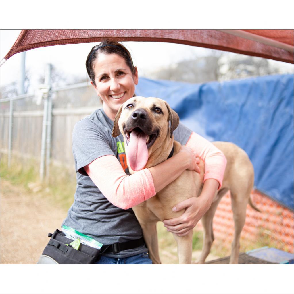 https://www.shelterluv.com/sites/default/files/animal_pics/464/2019/02/12/23/20190212232221.png