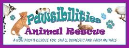 PAWSibilities Animal Rescue