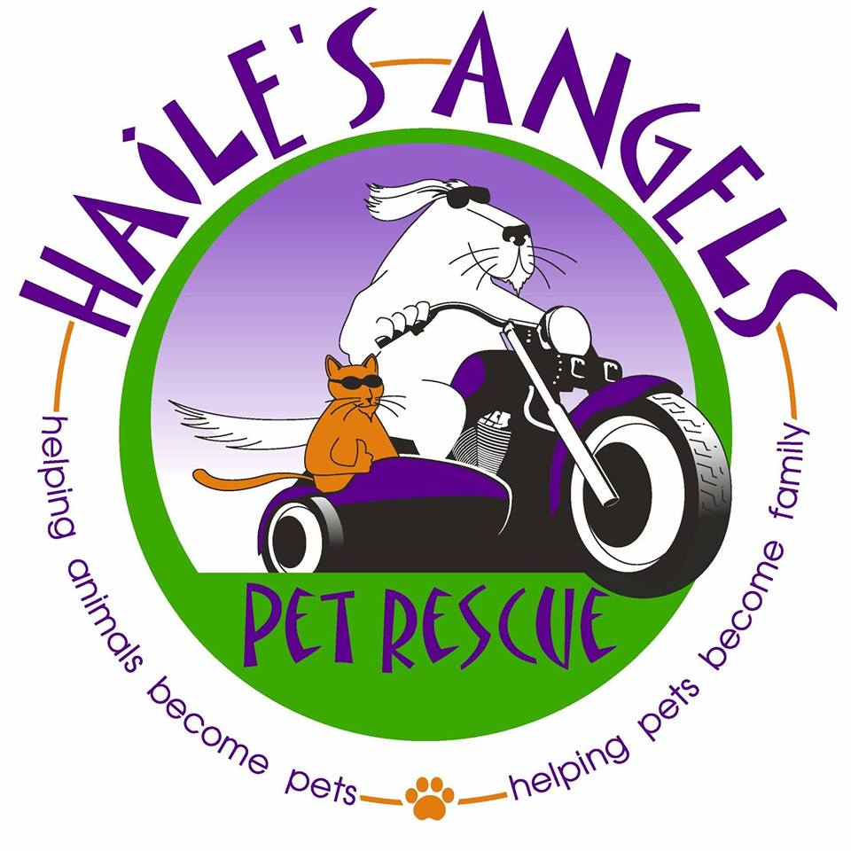 Haile's Angels Pet Rescue