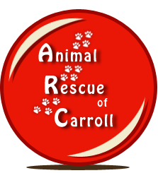 Animal Rescue of Carroll