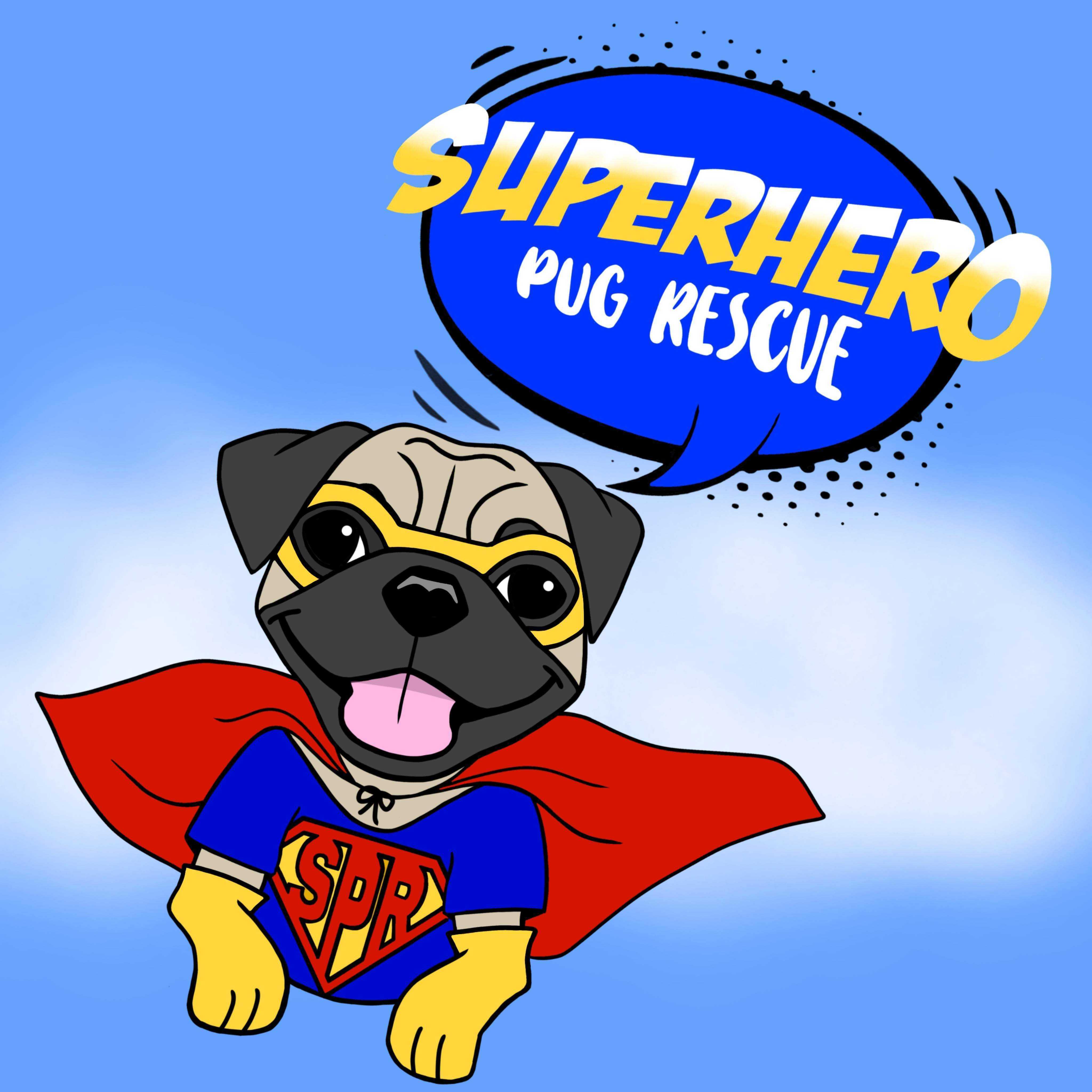 Superhero Pug Rescue